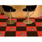Carpet Tile NFL Cleveland Browns 18x18 Inches 20 per carton