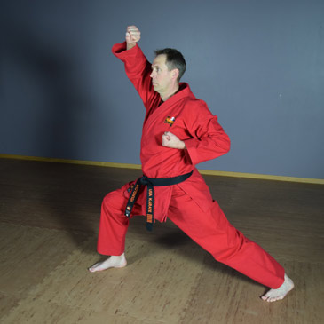 How To Do Basic Karate Stances Front Back Horse Cat Pro Tips