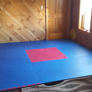 Top 5 Home Grappling Bjj Roll Out Folding Wrestling Mat Options
