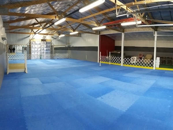 Dog Agility Mats installation.