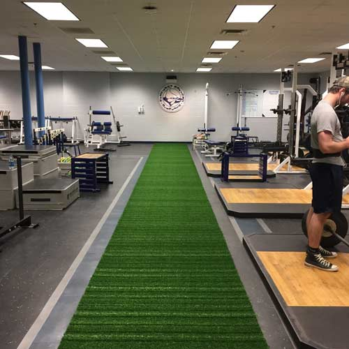 Gym Turf 365 Portable Indoor Sports Per SFgrass Strip