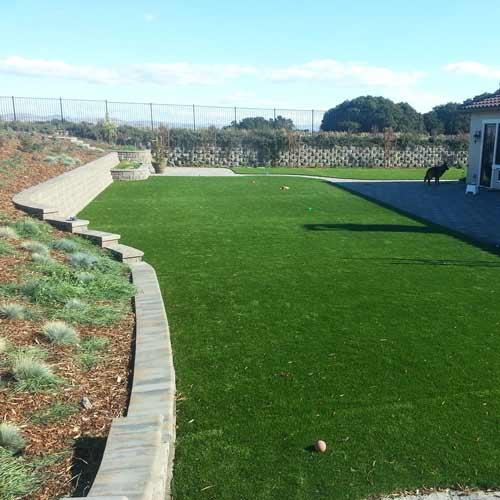 Pet Heaven Artificial Grass Turf Roll 12 Ft wide per SF