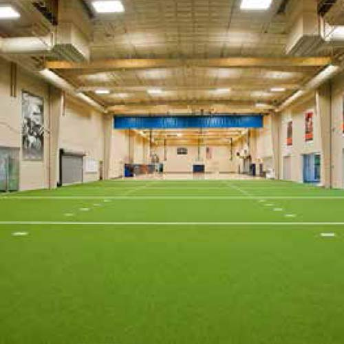 Velocity Indoor Grass Turf Agility Sports Turf
