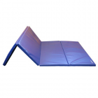 Gym Mats 4x8 Ft x 1.5 inch 4V 18 oz