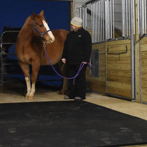 Horse Stall Mats 12x12 Ft Kit Horse Stall Tiles
