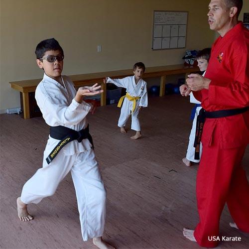Karate Mat Dojo
