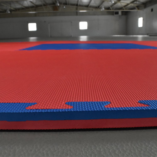 Pro Martial Arts Sport 7/8 Inch blue red border.