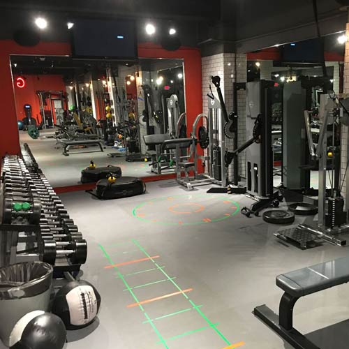 Pavigym Endurance Ss Weight Lifting