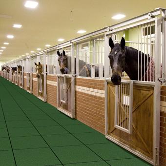 Outdoor Horse Stall Mats Equi Tile Rubber Horse Tile