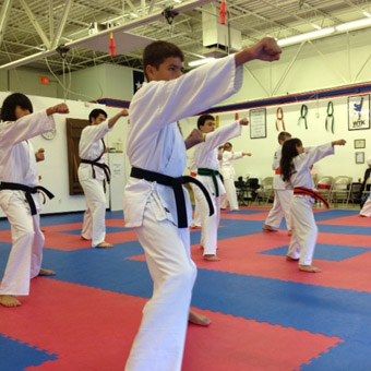 Karate mats are perfect for professional dojo installations