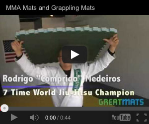 Grappling video