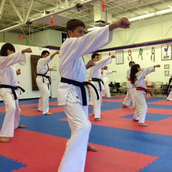 Martial Arts Flooring Options and Ideas