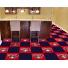 Carpet Tile MLB Washington Nationals 18x18 Inches 20 per carton