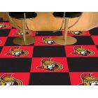 Carpet Tile NHL Ottawa Senators 18x18 inches 20 per carton