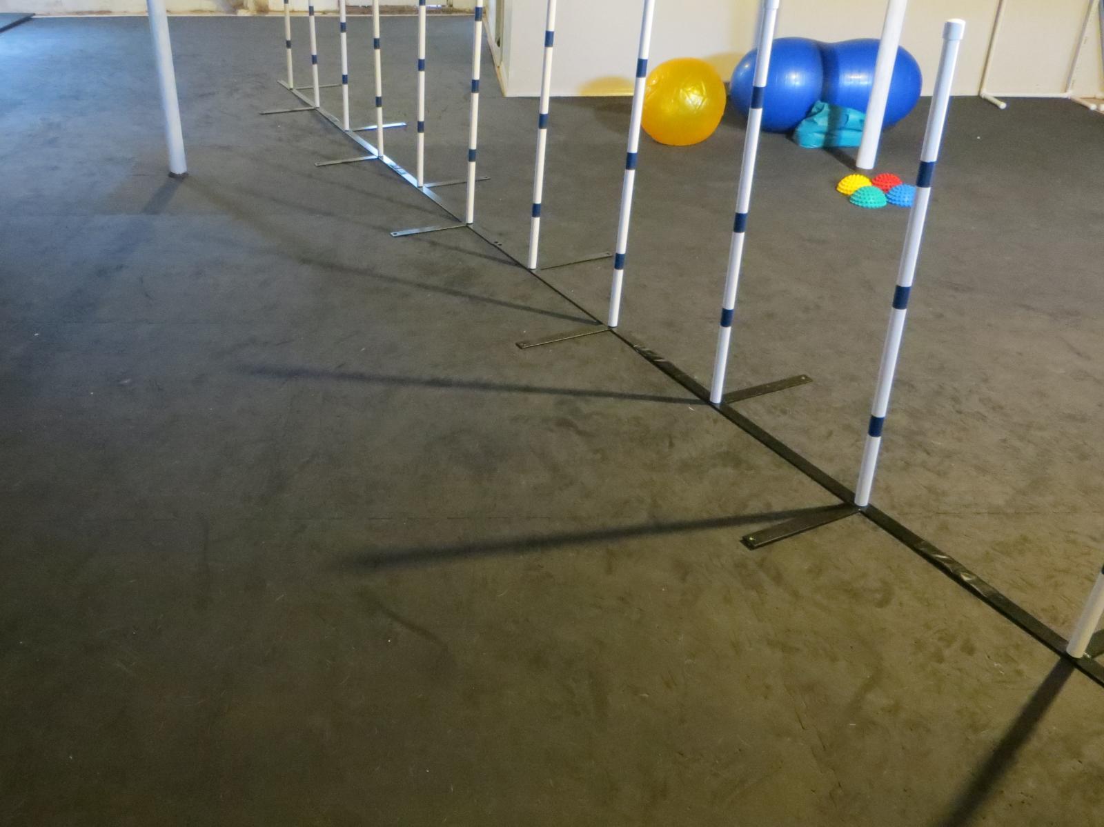 Dog Agility Mats Dog Agility Floor Flyball Mats